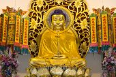 picture of emei  - Golden buddha image in chinese temple Nakhon Nayok Thailand - JPG