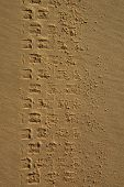 Path Of Car In Sand1
