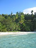 Blue Water And Tropical Beach, Togians Island, Sulawesi, Indonesia