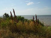 stock photo of azov  - Yeysk estuary - JPG