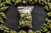 A Large Packet Of Weed A Lot Of Marijuana, Fresh Buds Of Cannabis Many Weed. Copy Spase Copy-space poster