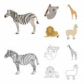 African Zebra, Animal Koala, Giraffe, Wild Predator, Lion. Wild Animals Set Collection Icons In Cart poster