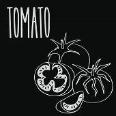 Isolate Ripe Tomato Vegetable As Chalk On Blackboard. Close Up Clipart In Chalkboard Style. Hand Dra poster