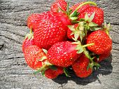 The Photo Shows Whole Ripe Berry Red Strawberry, Green Stem Leaf. Strawberry Photography Consisting  poster