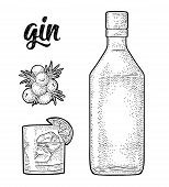 Glass, Bottle And Branch Of Juniper With Berries. Handwriting Lettering Gin. Vintage Vector Black En poster