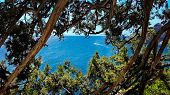 Beautiful View Of The Mountains, The Sea And The Blue Sky Through The Branches Of The Trees. Crimea. poster