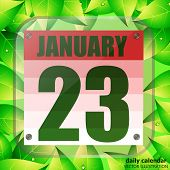 January 23 Icon. For Planning Important Day With Leaves. Banner For Holidays And Special Days. Janua poster