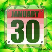 January 30 Icon. For Planning Important Day. Banner For Holidays And Special Days With Green Leaves. poster