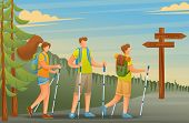Young People Actively Spend Holidays, Nordic Walking In The Woods. Vector Illustration. Flat 2d Char poster