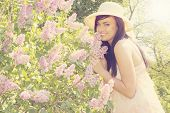 image of lilac bush  - A beautiful young woman smelling a blooming lilac bush - JPG