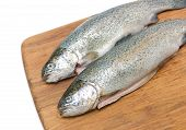 Raw Fish Trout On A Cutting Board Close Up.