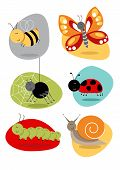 Bugs/Insects Set of Cute Characters