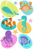 picture of clown fish  - Set of six fun character sea creatures including crab - JPG