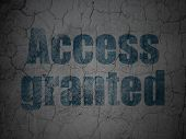 Privacy concept: Access Granted on grunge wall background