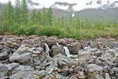 Waterfall In The Rocks
