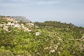 Mansions On Eze Hillside