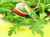 Fresh Rucola Salad With Radish And Kohlrabi