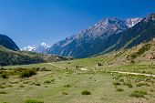 Rural landscape in Tien Shan mountains
