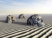 Human Skulls in a Desert Landscape