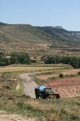 Old Woodcutting Tractor In Mountains