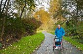 picture of down jacket  - Elderly male walking down walker down hiking path in autumn in park with fallen leaves - JPG