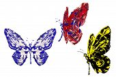 Blue Black Red Paint Made Butterfly Set