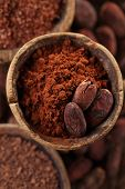 picture of bean-pod  - cocoa powder and roasted cocoa beans  in old spoon spoon  background - JPG