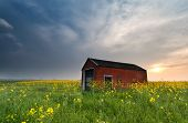 Sunset Behind Farmhouse On Rapeseed Field