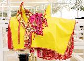 Closeup of yellow saddle