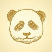 Sketch Head Of Panda, Vector Background