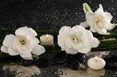 Three gardenia flower and two candle on pebbles �¢�?�?wet background