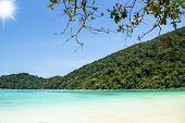 beautiful coralscape at Surin national park