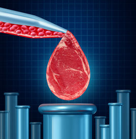 pic of animal cruelty  - Lab grown meat concept as laboratory equipment developing artifical beef by cultivating animal tissue in vtro resulting in cruelty free synthetic protien that is edible as a symbol of future food engineering technology - JPG
