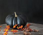 Black pumpkin with berries and leaves on table