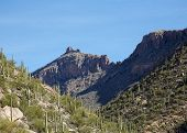 Arizona's Sabino Canyon