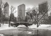 picture of covered bridge  - Central Park after a snowstorm with the Pond frozen - JPG