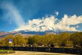 Mountain Etna In Spring