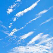 Little Cirrus Clouds In Blue Autumn Sky