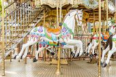 picture of merry-go-round  - Carousel horse on merry-go-round at amusement park
