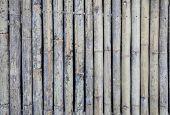 Zaun aus Bambusstöcke