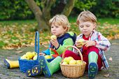 Two Adorable Little Kid Boys Eating Apples In Home's Garden, Outdoors