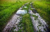 Dirt Road With Puddles In The Green Field