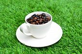 Cup Of Coffee On Green Grass