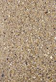 Wet Sand With Crushed Sea Shells