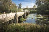 small bridge over a verdant brook