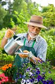 Portrait of senior man watering flowers