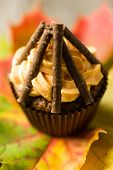 pic of guy fawks  - Cupcakes with orange icing swirl with chocolate fingers as logs - JPG