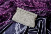 foto of clutch  - white clutch inlaid diamonds on silk background - JPG