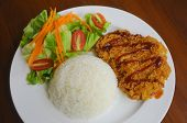 image of pork cutlet  - rice with deep fried pork cutlet served with green salad - JPG