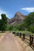 Mountain Hiking - Zion NP